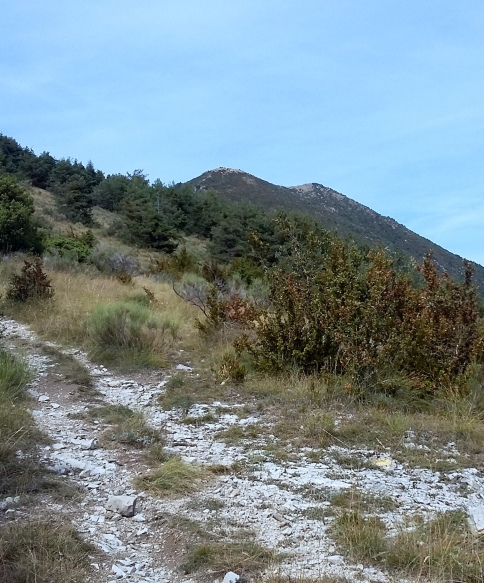 trail-chemin-fourchat