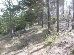 10km14